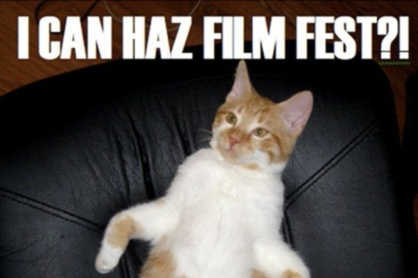 Internet Cat Video Festival